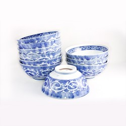 Set de 10 bols à riz bleus