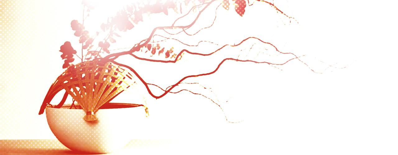 Ikebana - Le Japonais, site de vente en ligne, slide 06
